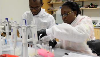 ACEGID Develops Prototype for Lassa Fever Test