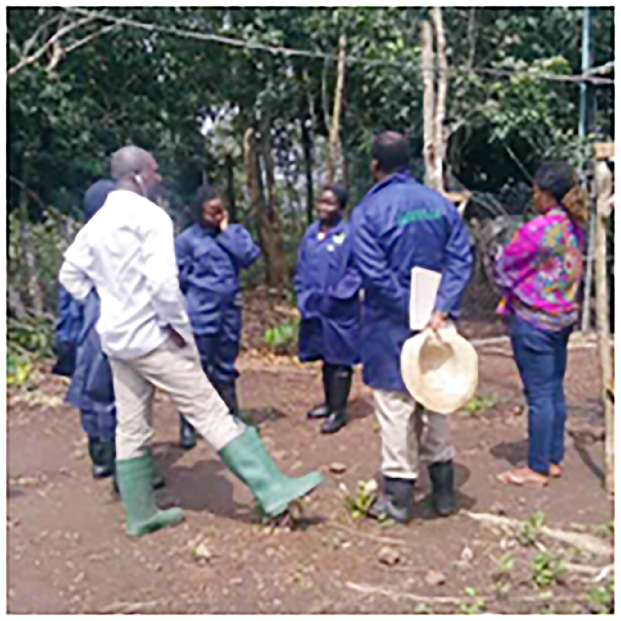 CEADESE Set for Environmentally-Smart Agric Innovations